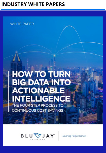 BluJay Solutions - How to turn big data into actionable intelligence