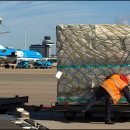 New AMS-based airfreight wholesaler takes off