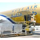 Gulf Air Cargo opts for Aero Cargo GSA in France