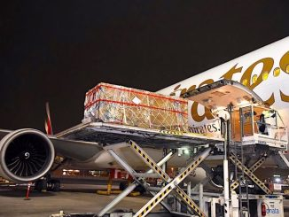 Emirates SkyCargo transports 2,000 year old buddha historical artefact