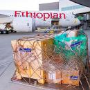 Ethiopian Airlines, Boeing partner on aid with latest delivery flight