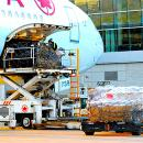China flights suspended over Wuhan virus, cargo begins taking a hit