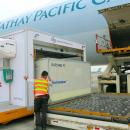 Envirotainer's India station upgrades a boon for Cathay