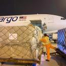 MASkargo races against the clock on urgent medical cargo