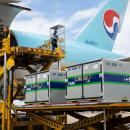 Korean Air prepares for global COVID-19 vaccine delivery